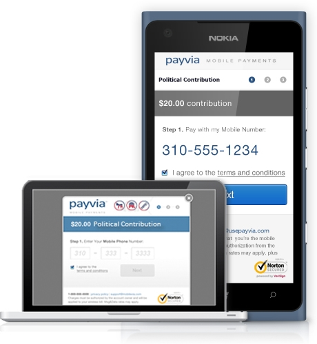 Mobile Finance Success Story: Payvia