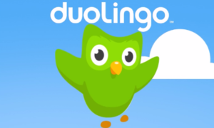 Duolingo language learning app logo