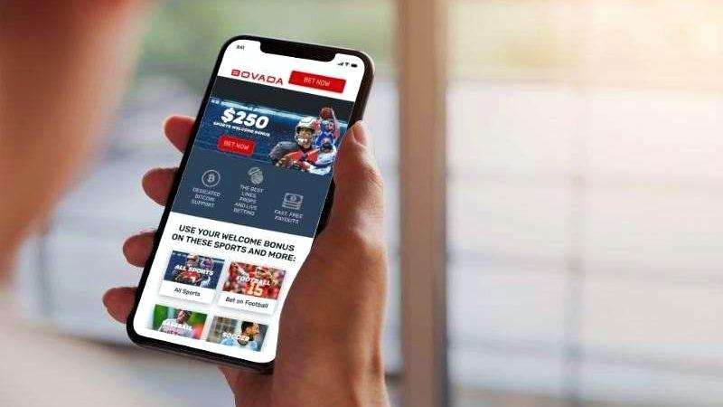Mobile sports betting apps lisicki vs radwanska betting expert tennis